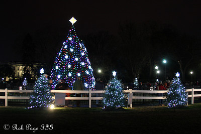 The National Christmas Tree - Washington, DC ... January 1, 2012 ... Photo by Rob Page III