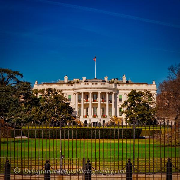 20111209_Washington DC_3230