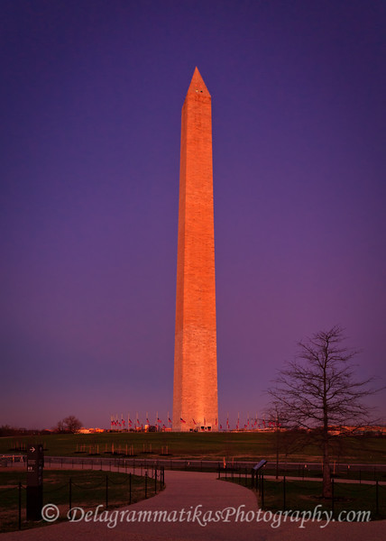 20111208_Washington DC_3366