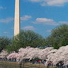 Washington DC Monument Photo