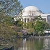 Jefferson Memorial Washington Picture