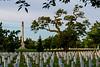 Arlington-1186-Edit