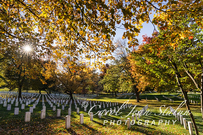 Arlington National Cemetery 2