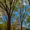 20190417_Washington DC_7323