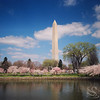 Washington Monument Picture