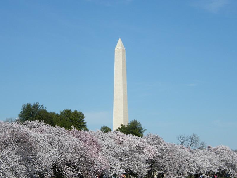 Washington Monument from Tidal Basin