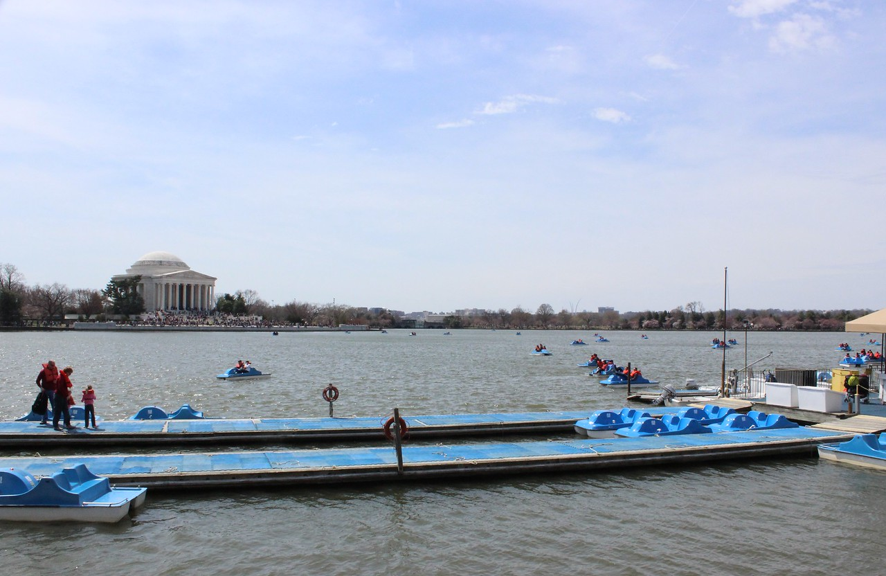 Boating on the Tidal Basin