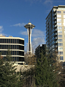 The Seattle Space Needle Seen From the Olympic Sculpture Park
