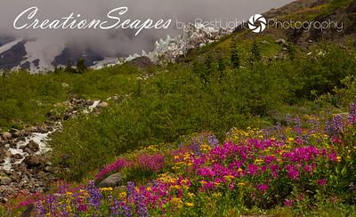 Mount Baker - Coleman Glacier Washington