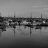 'Safe Harbor' (Black and White)