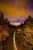 space-needle-evergreen-state-seattle-washington-city-skyline-trees-long-exposure-DSC_0629