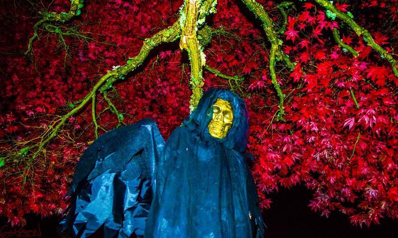 grim-reaper-garson-shortt-photography-2013-DSC_0053