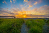 The-Cove-Westhaven-State-Park-Westport-Wa-Beach-Sunset-View-of-Ocean-Shores-DSC_0934-nobirds