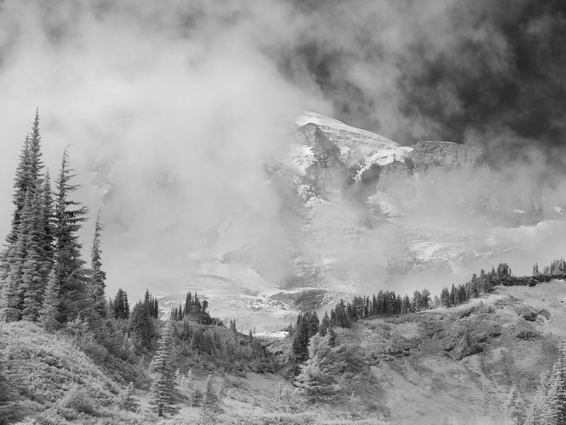 Mt. Rainier.