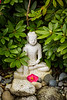 A buddha Image in La Conner, Washington, USA.