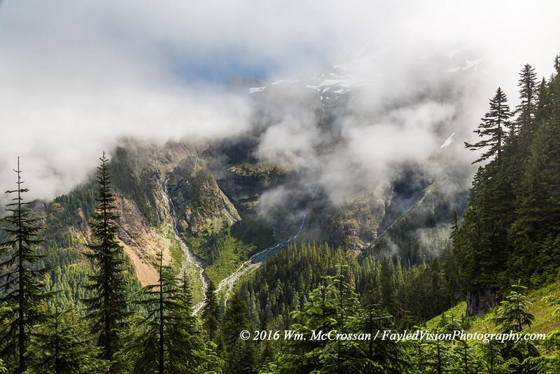Clearing Rain - Wonderland Trail