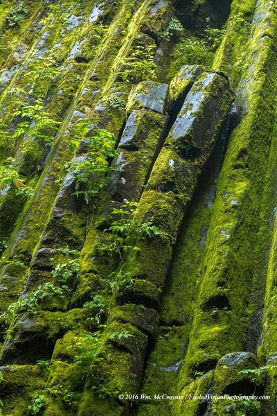 Columnar Basalt - South Puyallup Campground