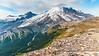 Burroughs Mountain Trail, Mt. Rainier N.P.