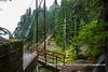 Tahoma Creek Bridge