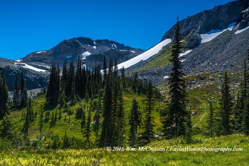 Wonderland Trail near Summerland Campground