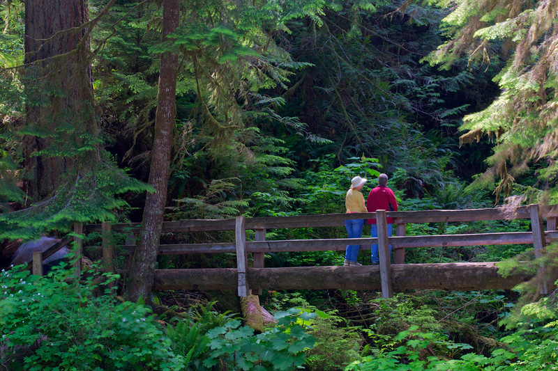 Hikers, Marymere Falls Trail
