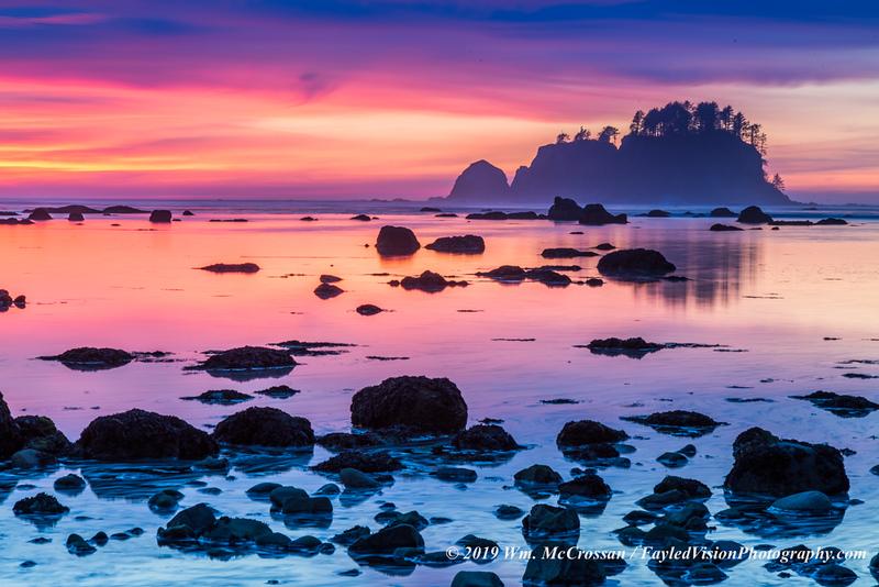 Olympic Peninsula Coast, Washington