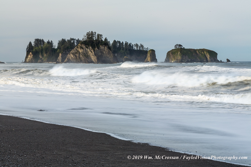 Olympic Peninsula Coast, Washington
