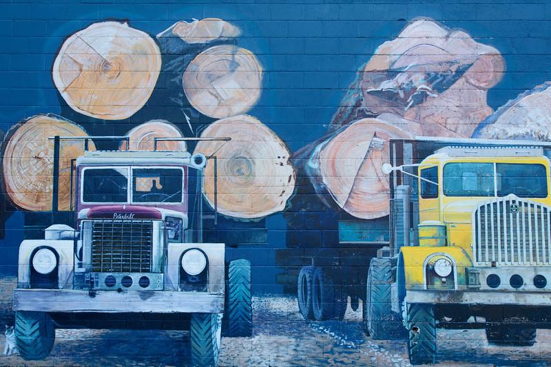 Wall Mural, North Bend, Washington
