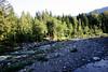 South fork of the Stillaguamish River