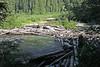 Log jam on the Sauk river