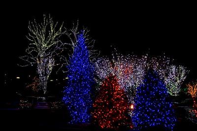Festival of Lights at the Washington Mormon Temple