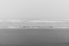 Grays Harbor, Seabrook - Waves crashing ashore on a foggy day