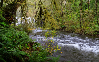 Beaver Creek below Beaver Falls
