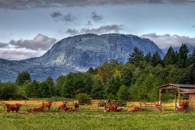 Ranch along N. Cascade Hwy.