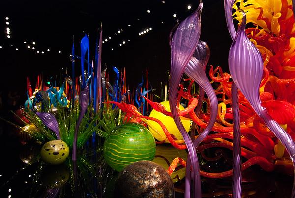 Glass Jungle