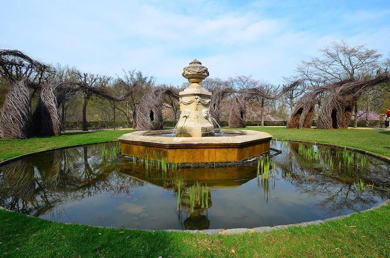 Dumbarton pond