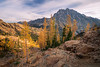 Stuart, Ingalls - Larch trees in early morning with Mt. Stuart