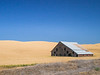 Palouse, Farm  - Abandoned barn in a yellow wheat field