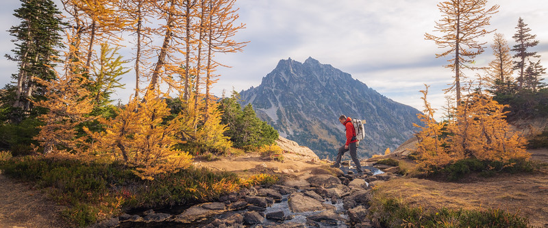 Stuart, Ingalls - Hiker crossing a stream with larch and Mt. Stuart