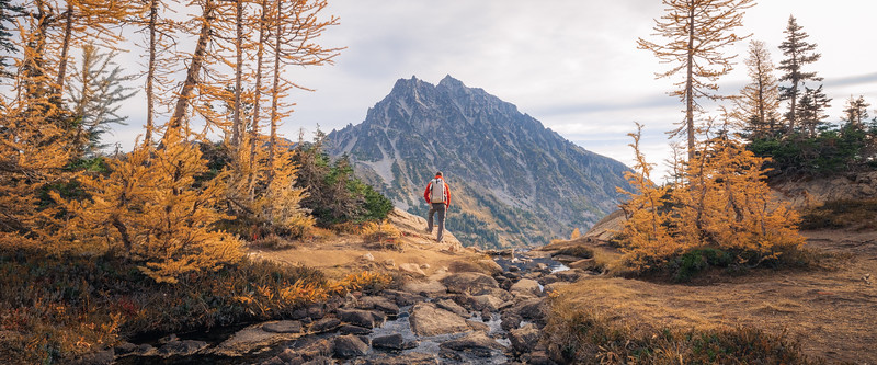 Stuart, Ingalls - Hiker admiring the view with larch and Mt. Stuart