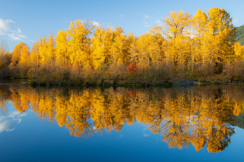 Easton, Pond - Stand of fall colors reflected in lake
