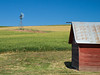 Palouse, Farm  - Red barn and windmill in a wheat field