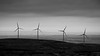Kittitas, Wild Horse - Four windmills overlooking the Columbia Basin, black and white