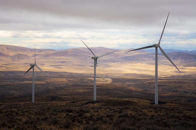 Kittitas, Wild Horse - Three windmills against a sunny valley