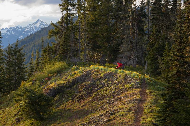 Kittitas, Kachess Beacon - Photographer in red jacket on trail near flowers