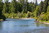 Kittitas, Iron Horse Trail - Man flyfishing in Yakima River