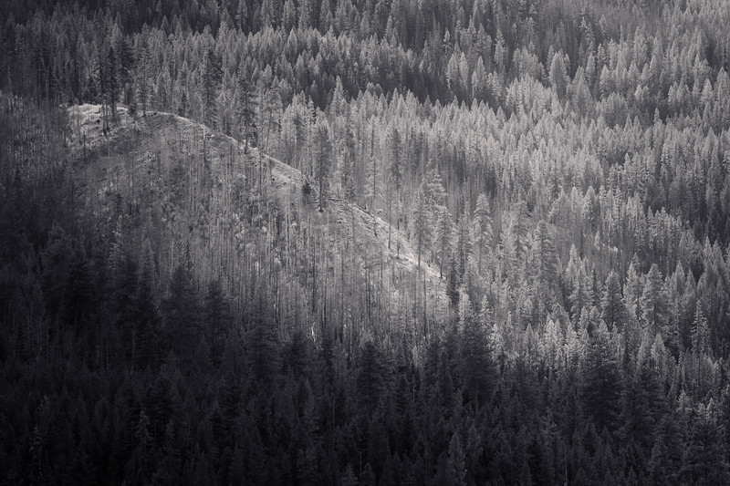 Kittitas, Blewett Pass - Bald ridge in the sun