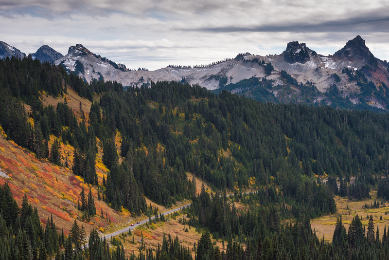 Fall color at Mount Rainier National Park
