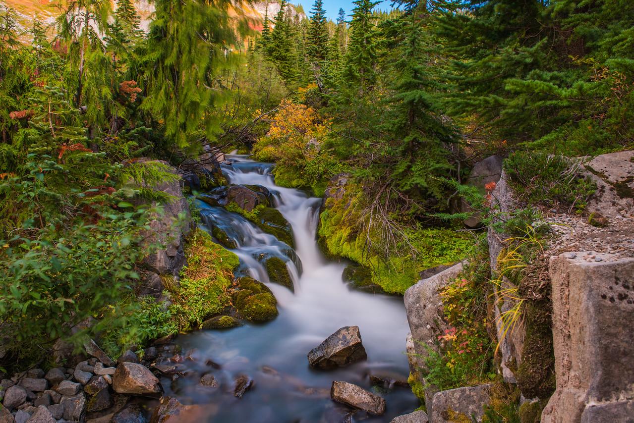 Fall color at Mount Rainier National Park