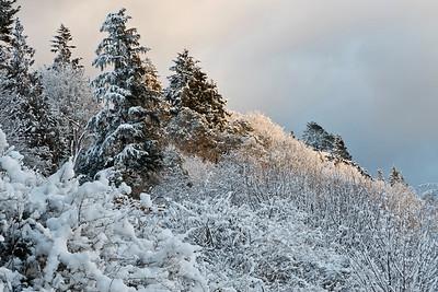 Kingston scenery following winter snow storm.